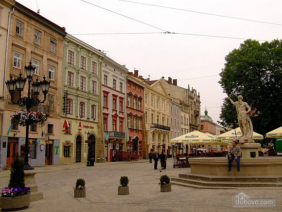 Comfortable apartment in the center of Lviv, Studio (54366), 013