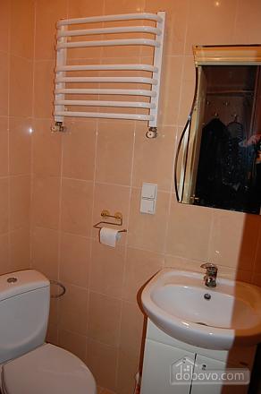 Квартира біля Форума, 1-кімнатна (64963), 007
