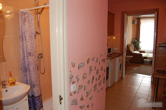Квартира біля Форума, 1-кімнатна (64963), 008