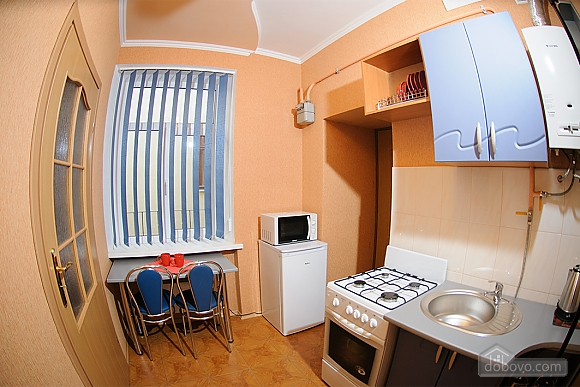Apartment near Rynok square, Monolocale (73296), 003