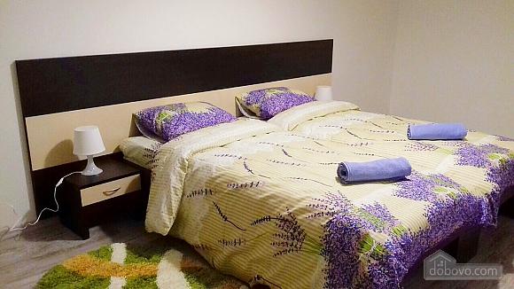 Great apartment, Zweizimmerwohnung (64928), 001