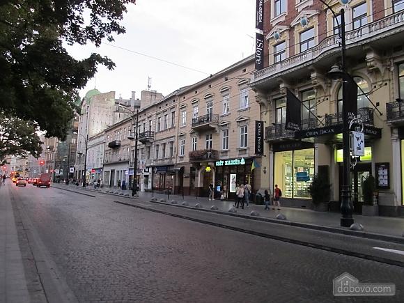 Квартира у центрі Львова, 2-кімнатна (24144), 004