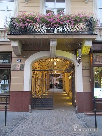Квартира у центрі Львова, 2-кімнатна (24144), 005