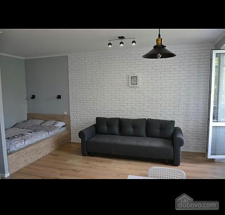 Stylish apartment, Studio (46930), 002