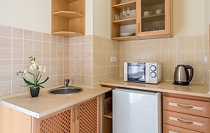 Studio apartment in Holosiivskyi district of Kyiv, Monolocale, 003