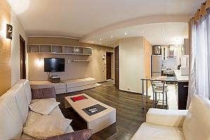 Apartment on Lesi Ukrainky boulevard, Un chambre, 003