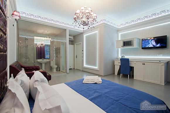 Large quiet stylish studio apartment with balcony, Studio (92562), 004
