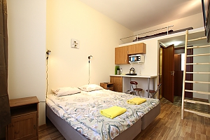 Apartment for 3 guests in the city center, Monolocale, 001