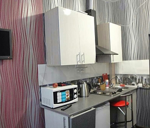 Studio apartment with good renovation near Sportyvna metro station, Monolocale, 003