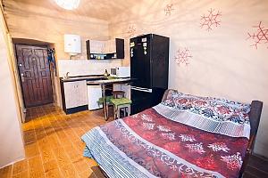 Квартира-студіо в центрі Львова, 1-кімнатна, 001