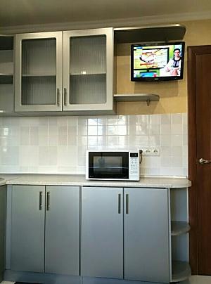 Cozy apartment on Obolon, Studio, 002