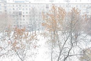 Apartment near the square, Una Camera, 021