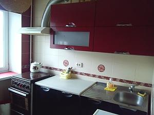Apartment in Novi Budynky near metro, Studio, 006