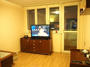 Apartment in the centre of Katowice (3213), One Bedroom, 004