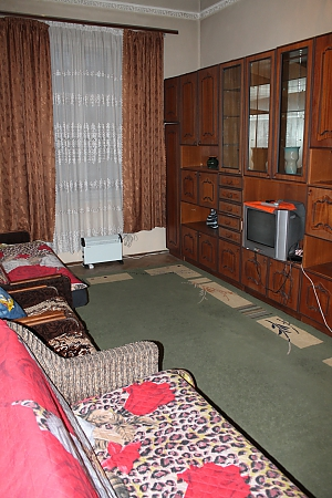 Doroshenko apartment near the park, Un chambre, 003