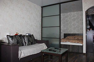 New cozy and spacious apartment near the city centre , Studio, 001