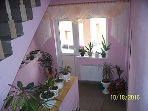 Комната в мини-отеле, 1-комнатная, 004