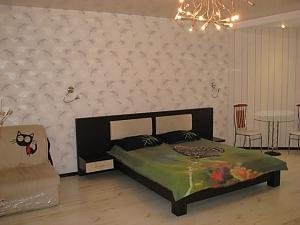New apartment on Cheriemushki district, Studio, 001