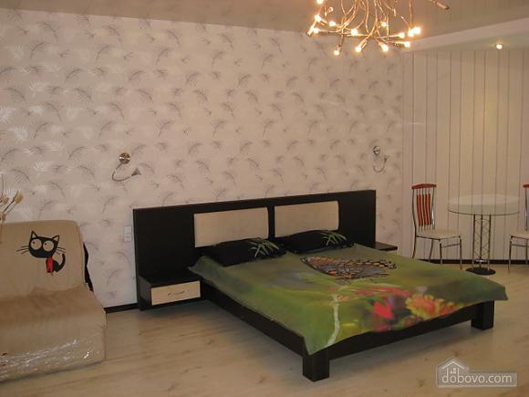 Квартира в новом доме на Черемушках, 1-комнатная (70244), 001