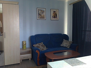 Apartment in Podilskyi district with a great view, Monolocale, 002