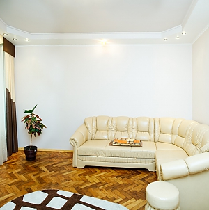 Cozy apartment in center of Lviv, Monolocale, 001