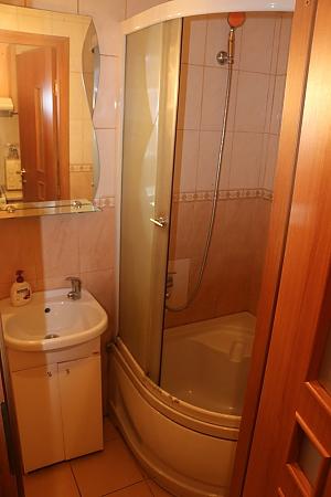 Квартира в центрі, 1-кімнатна, 012