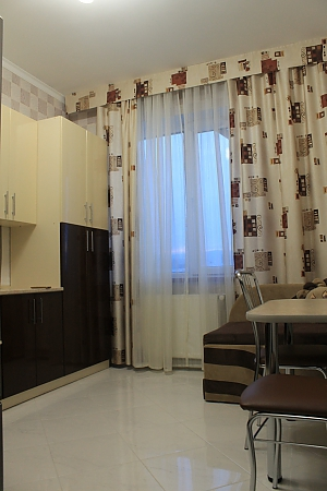 Apartment in a new building in the center of Truskavets, Studio, 002