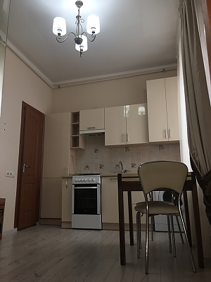 Renewed stylish apartment in the Odessa center, Studio, 003