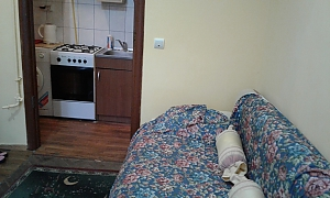 Затишна квартира неподалік від центру, 1-кімнатна, 002