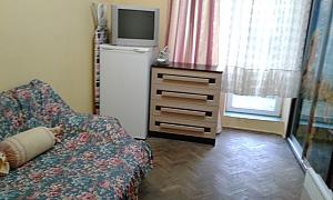 Затишна квартира неподалік від центру, 1-кімнатна, 001