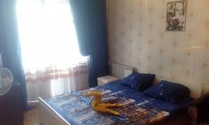 Уютная чистая квартирка, 1-комнатная, 001