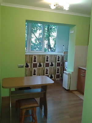 Comfortable apartment near Institute of Heart, Monolocale, 003