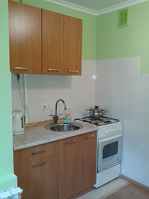 Comfortable apartment near Institute of Heart, Monolocale, 004