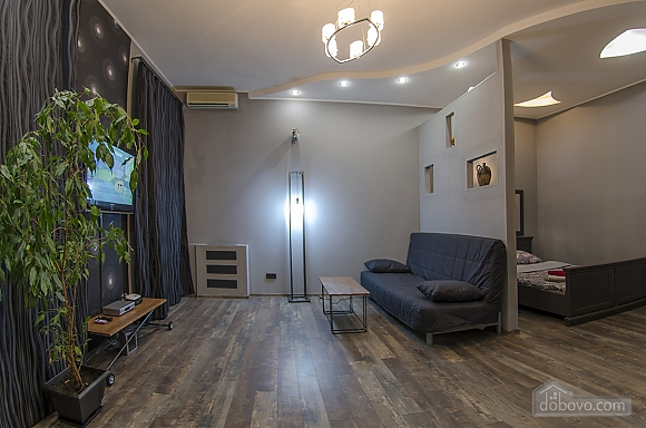 Apartment in the center of Kiev, Studio (27585), 003