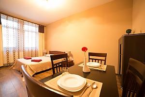 Cozy suite in the apart-hotel, Studio, 004