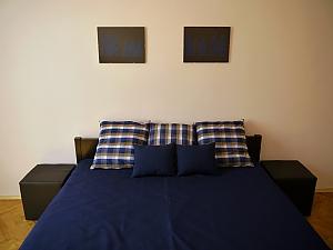 Modern apartment near the centre of Lviv, Un chambre, 004