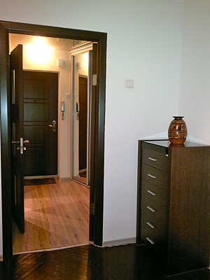 Прекрасная квартира на Дворце Украина, 1-комнатная, 008