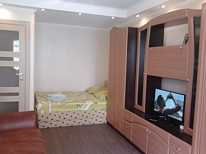 Apartment near Livoberezhna metro station, Studio, 002
