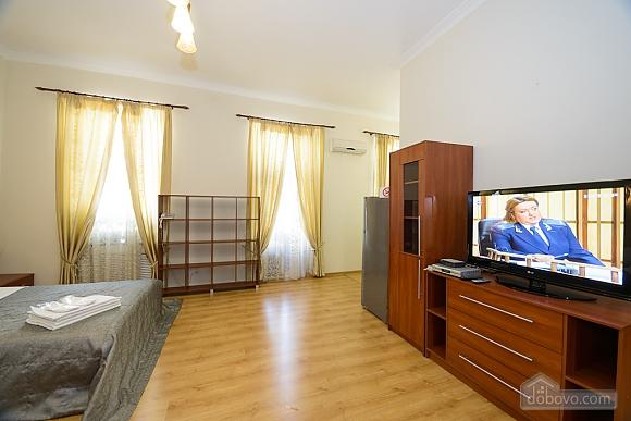 Large jaсuzzi apartment with balcony and sofa bed, Studio (51825), 008
