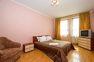 Comfortable spacious one-bedroom apartment with kitchen and bathtub, Un chambre, 001