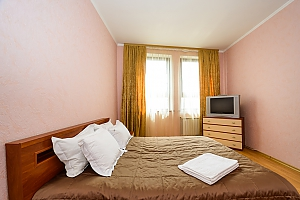 Comfortable spacious one-bedroom apartment with kitchen and bathtub, One Bedroom, 003