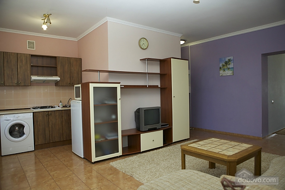 Spacious apartment with Wi-Fi in a quite center, Un chambre (96913), 006