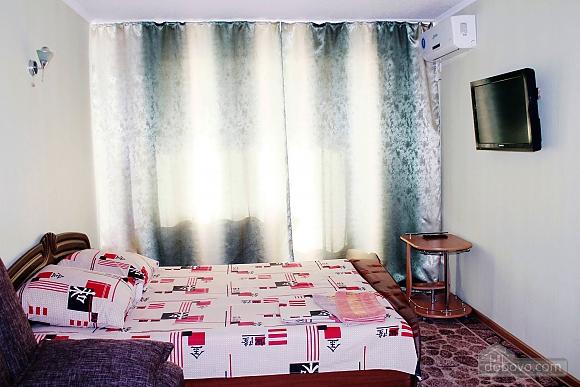 Однокімнатна квартира в центрі, 1-кімнатна (75715), 001