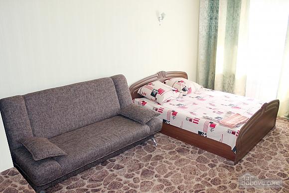 Однокімнатна квартира в центрі, 1-кімнатна (75715), 002