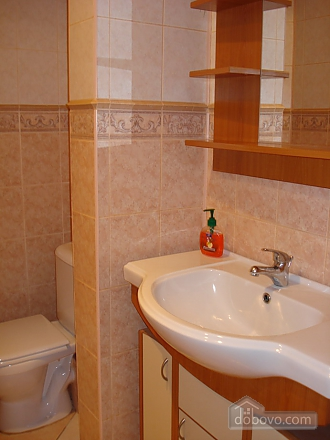 Apartment in the heart of the capital, Un chambre (58011), 007