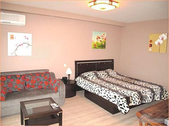 Квартира біля Бессарабки, 1-кімнатна (61241), 001