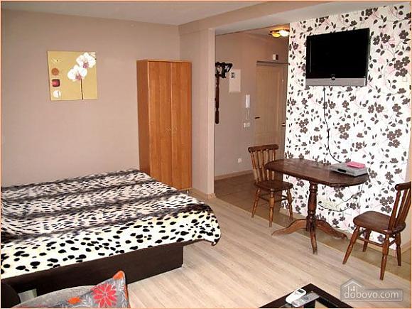 Квартира біля Бессарабки, 1-кімнатна (61241), 002