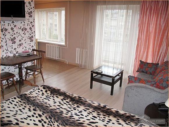 Квартира біля Бессарабки, 1-кімнатна (61241), 003