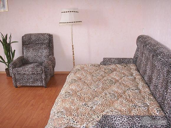 Квартира с ремонтом, 1-комнатная (17988), 001