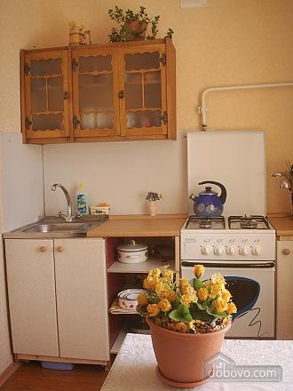 Квартира с ремонтом, 1-комнатная (17988), 002